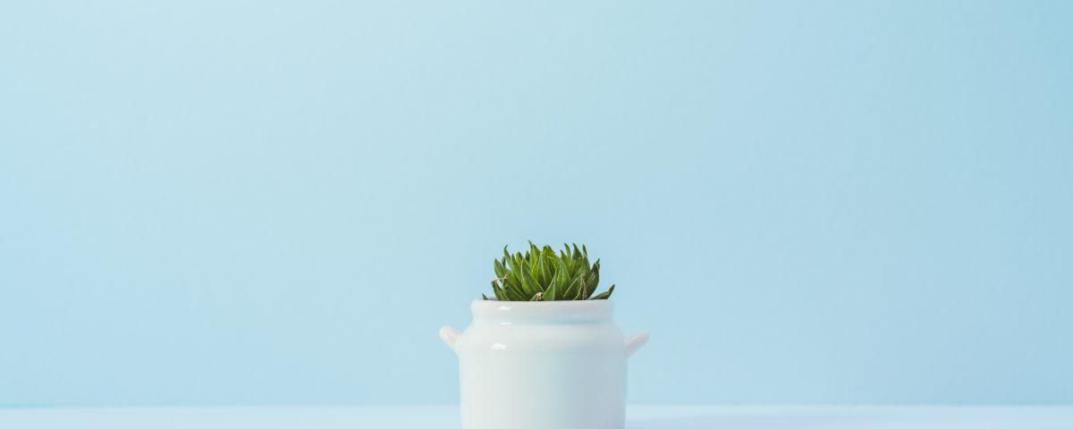 foto-nietgoedsnikki-minimalism-de-kwekerij-blog