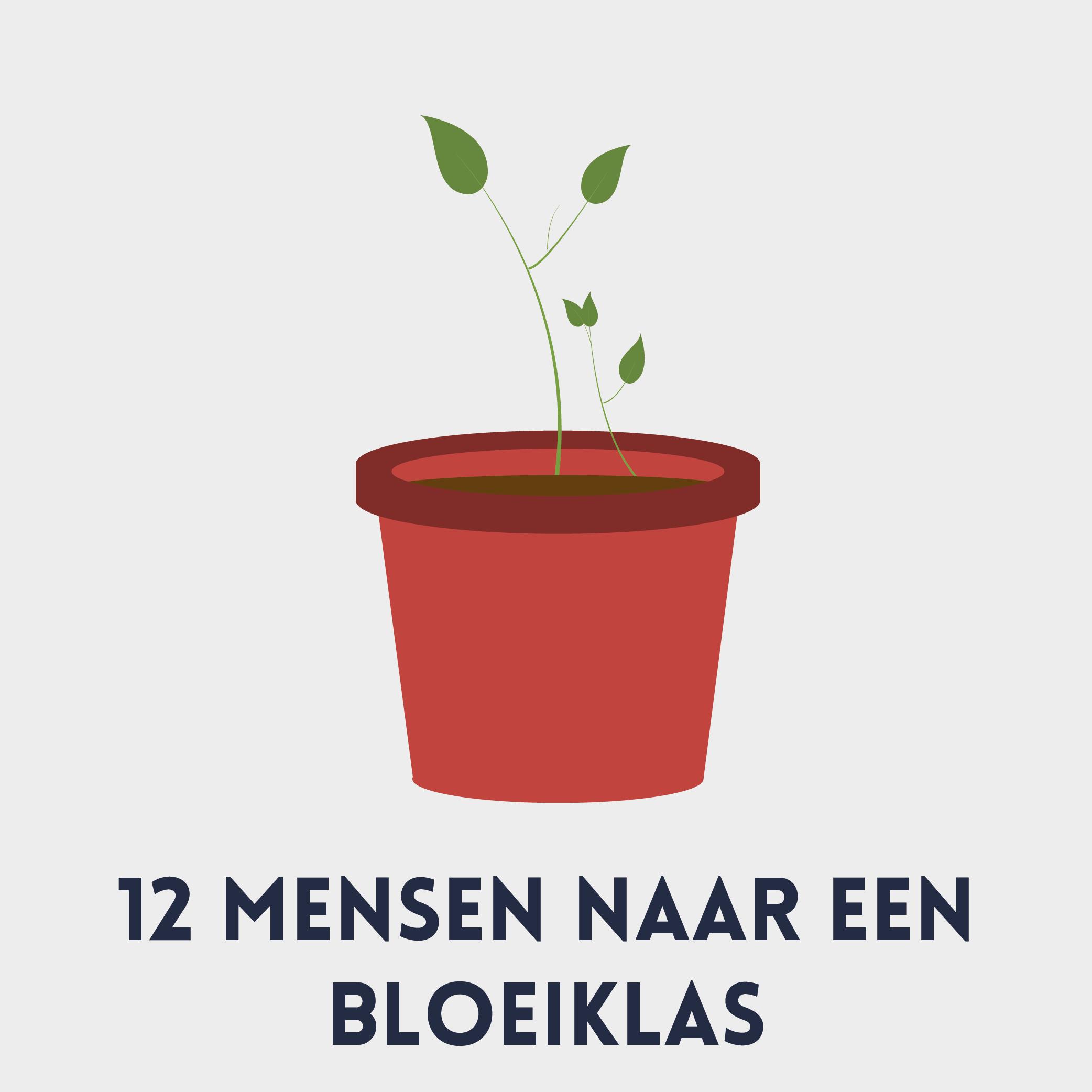 bloeiklas_Tekengebied 1-02