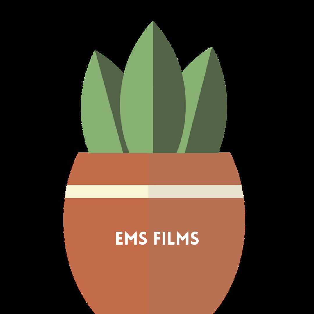 ems films