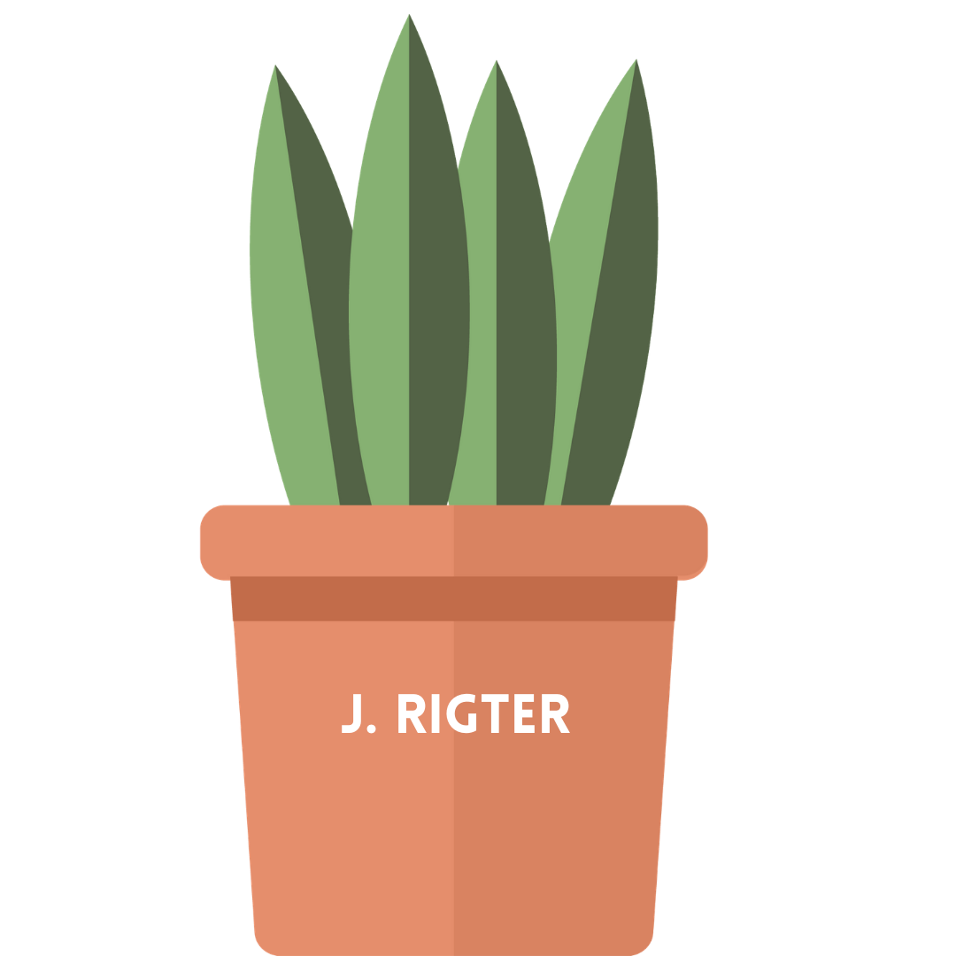 rigter